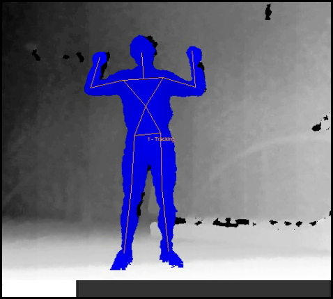 Body Segments