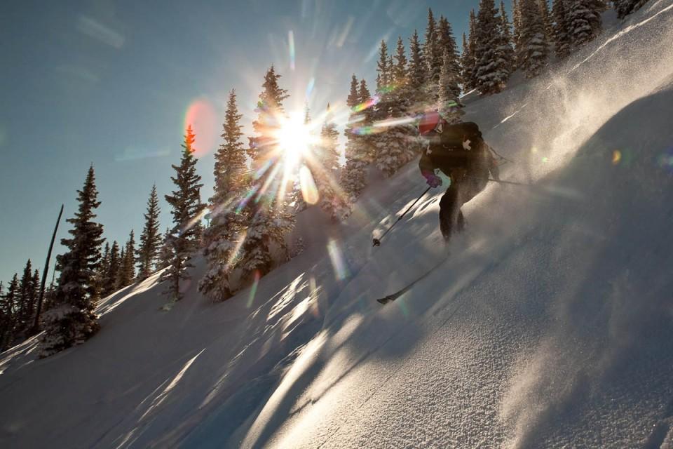 Skier in powder